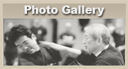 Photo Gallery Ninjutsu